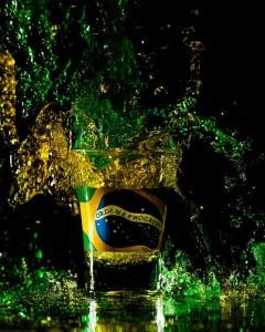 festa_brasil